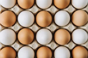 Eierschalenmembran