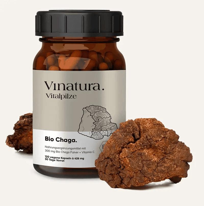 Chaga Pilz von Vinatura
